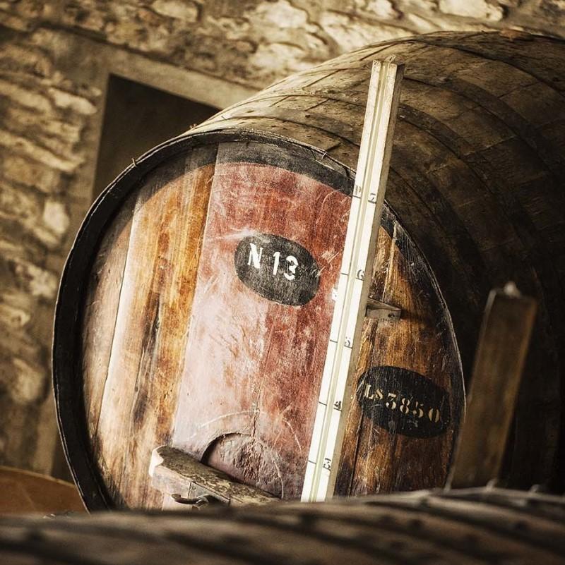 novo website para essencia do vinho