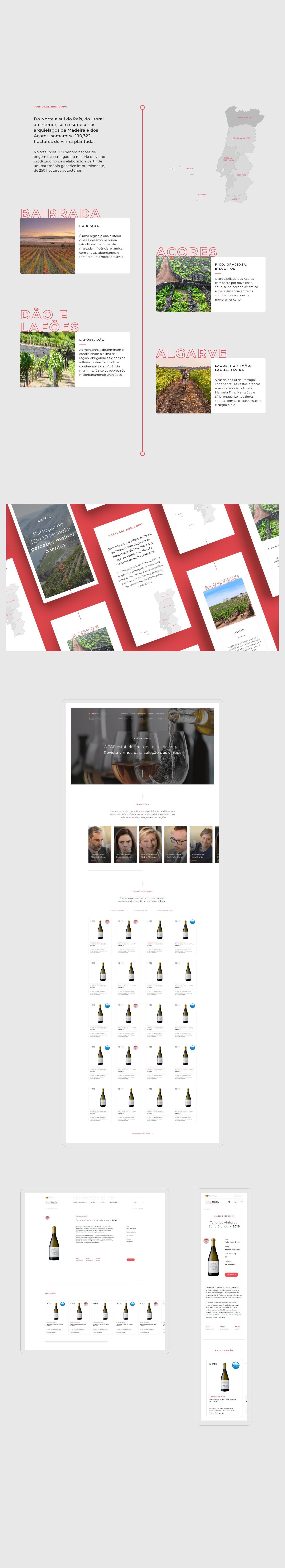 layout desenvolvido para website da tap